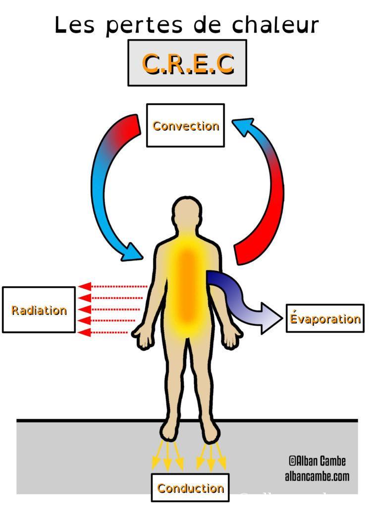 Les pertes de chaleur du corps humain hypothermie